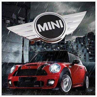 Mini cooper D S One Cooper cabrio R50 R52 R53 R56 R57 F55 F56 wing badge