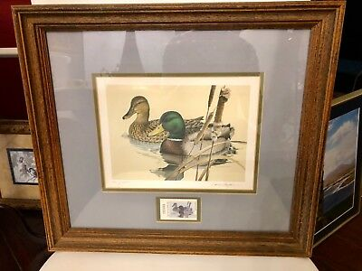 1981 Texas Duck Stamp Ltd Editio Mallards Stamp Print Framed Signed Larry Hayden
