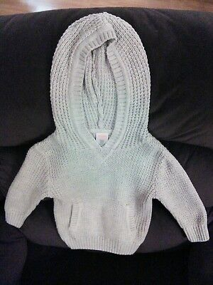 Gymboree Baby Boys Beige Hooded Sweater Size 12-18 Months