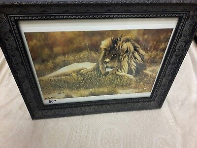 Cyril Cox The Patriarch Print In Frame 86/395, Signed