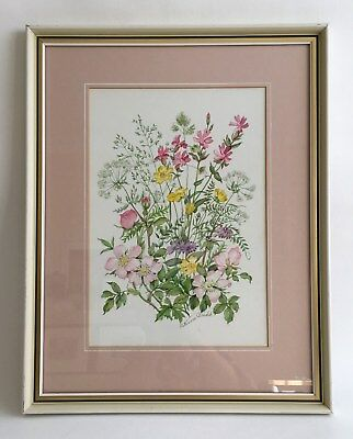 Patience Arnold Wild Flowers and Meadow Grasses Original Watercolour Signed