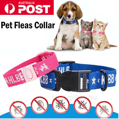 Nylon Adjustable Pet Dog Anti Flea Collar Ticks Mosquitoes Elimination Months AU