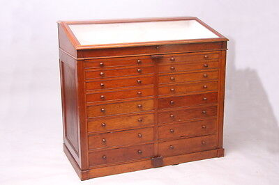 Antique Collectors Display Cabinets, Haberdashery Cabinet 1900 Mahogany
