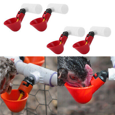 4X Automatic Cups + Tube Chicken Waterer Poultry Chook Bird Water Feeder Drinker