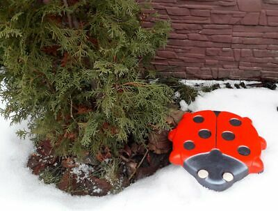 Ladybug Stepping Stone Mold Concrete Cement Mould ABS moth garden path #S49