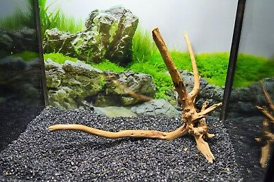 small red moor wood bogwood driftwood nano aquariums vivariums 14-20cm plus