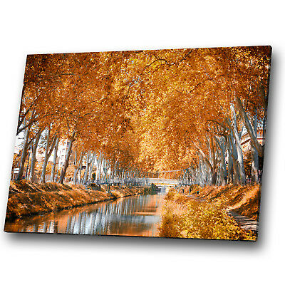 Nature Scenic Yellow Trees Leaves  Landscape Canvas Wall Art Large Picture Print