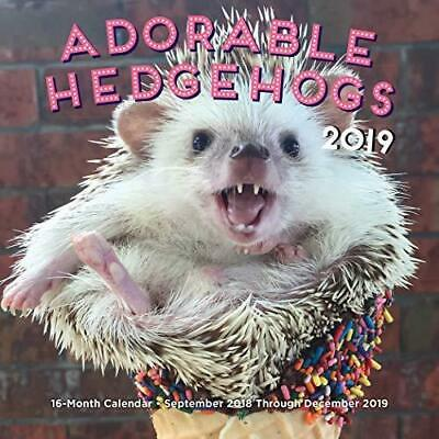 Adorable Hedgehogs Mini 2019: 16-Month Calendar - September 2018 through...