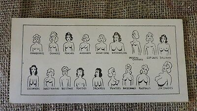 Vintage Original Cartoon Boob Size Chart, 1940's, Card Stock, WW2 Era, (VB)