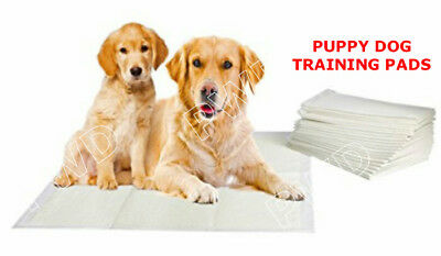 Dog Puppy Extra Large Training Pads Pad Wee Wee Floor Toilet Mats 60 x 40 cm