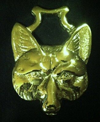 STUNNING FOX HEAD Horse Harness Brass from England Unique Fox WOW YOUR WALLS!