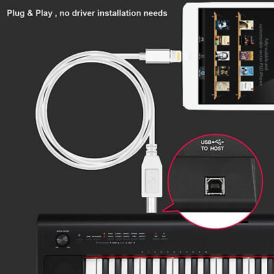 Lightning to MIDI Cable Type-B Cord for iPhone / iPad / Converter Midi Keyboard