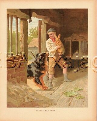 Rabbit, Collie Dog & Boy, Charming Farm Scene, Antique 1890s Chromolith Print