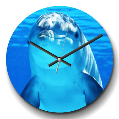Large Wall Clock Silent 32cm Modern Home Decor Dolphin (3) Animal