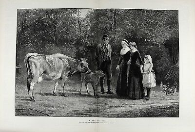 Cow & Calf Newly Purchased, Charming Huge Double-Folio 1880s Antique Print
