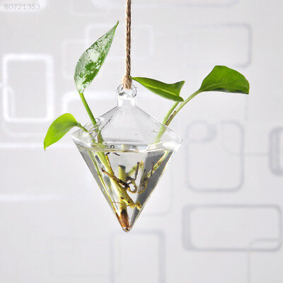 0A75 Hanging Vase Hanging Terrarium Hanging Glass Planter Clear Flower Planter