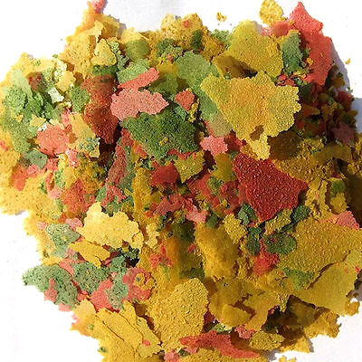 Fresh Tropical Fish Flakes Food 100g AF BULK Tank Aquarium *PBLIS