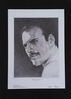 Freddie Mercury Queen pencil drawing limited edition signed print by Thomas Ross