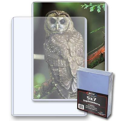 10 loose BCW Brand 5 x 7 Topload Postcard Photo Holders Storage Protection