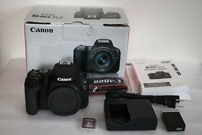 Canon EOS Rebel SL2 Body Only.  24.2 MP.  Excellent Condition
