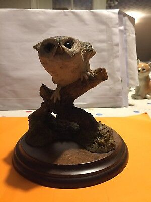 Country Artist By Richard Cooper. Little Owl #374