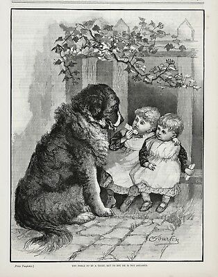 Dog Bernese Mountain Dog Begs Food From Toddlers, Large 1890s Antique Print