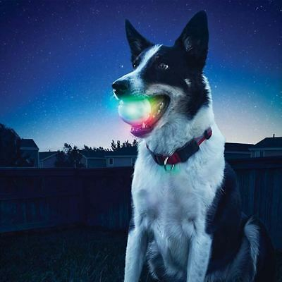 LED Hunde Ball Hundespielzeug leuchtend Wurfball Outdoor Training Kau Biss Nacht