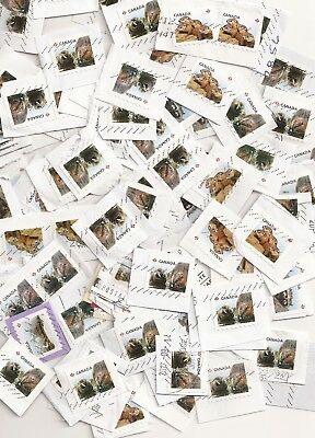 100 Small Animal Canada stamps used, on paper