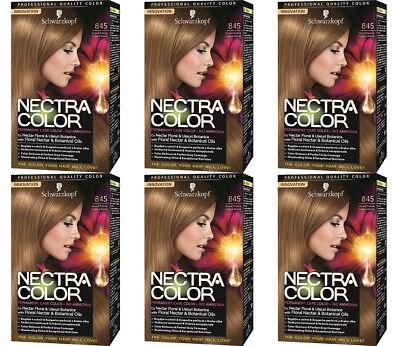 BULKBUY 6x Nectra Color 845 Permanent Hair Dyes Brown Praline Blonde * BBE01/18