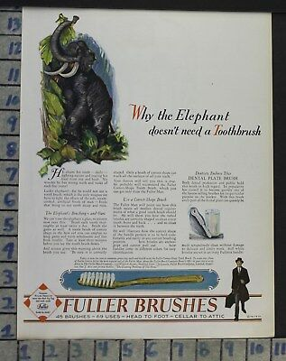 1928 Dental Medical Fuller Tooth Brush Animal Jungle Elephant Vintage Ad Cj45