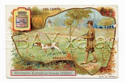DOG English Pointer & Hunter, Victorian Advertising Trade Card Trading French