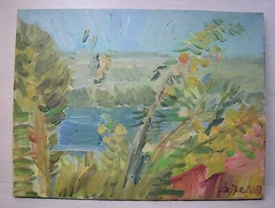 Vintage Collectible Oil Painting on Canvas Spring Lake 2009 Signed Chaika