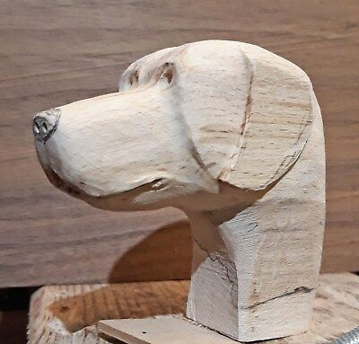 Labrador type Dogs Head Carving Blank Walking Stick topper - in Beech.