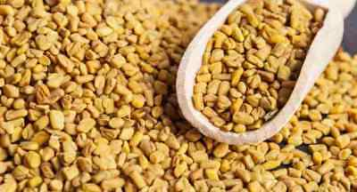 100g FENUGREEK (METHI) SEED - High Quality