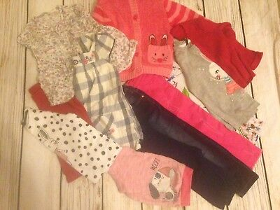 Toddler Girl Clothing Bundle 12 Items 2-3 Years