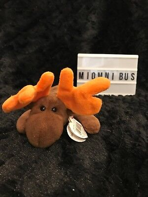 Ty Beanie Baby Chocolate The Moose 1993 Original Plush Toy Collection
