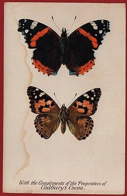 Cadbury's Cocoa Butterfly & Moth Reward Cards 1910 RED ADMIRAL and PAINTED LADY