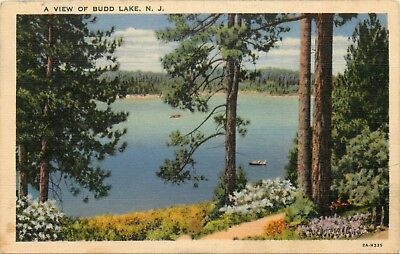 1939 New Jersey Postcard: Scenic View Of Budd Lake, Nj