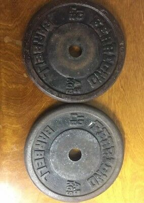 Ferrigno Barbell 10lb (4.5kgs) Set Of 2 Collectible Weights.