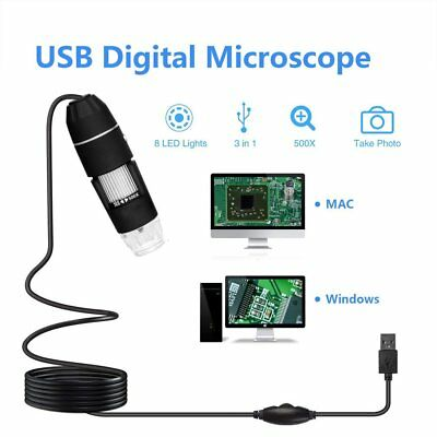 USB Digital Electronic Microscope 8-LED 1000X Magnifier Endoscope Camera HY