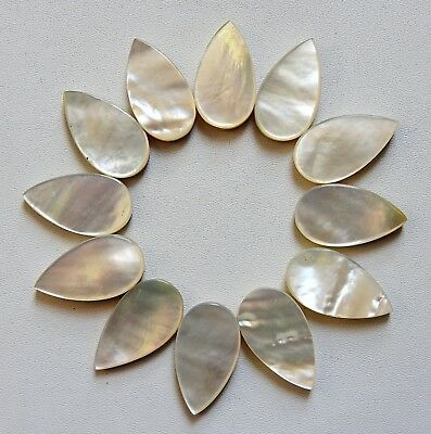 66.00 Gorgeous Mother Of Pearl Pear Flat Cabochon 12 Pcs 19X11X3 Gemstone India