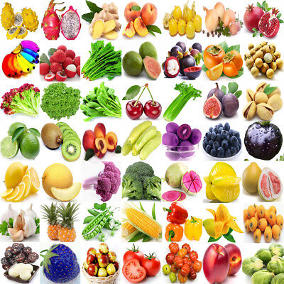 209 Type Rare Vegetable Fruits Seeds Home Garden Plant NON GMO Survival Heirloom