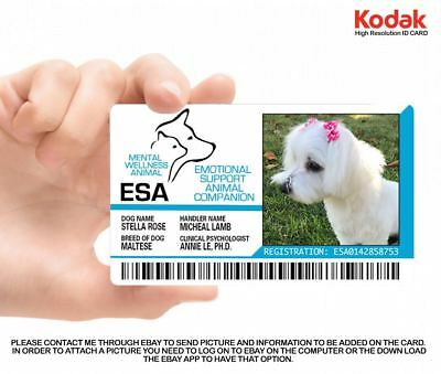 Emotional Support Animal (Esa) Id Card  - Holographic Professional Grade Card