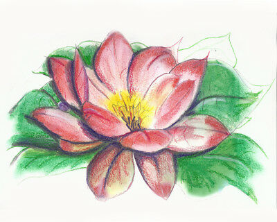 """Artist Signed and Limited, Numbered Print """"Lotus"""" 11x14 Only 25 made EVER"""