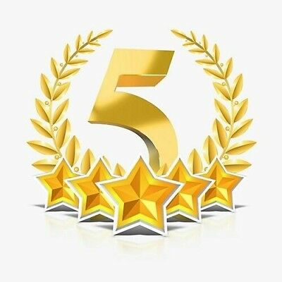 5 Star Search Engine Business SEO Friendly Review - From Google Local Guide MI