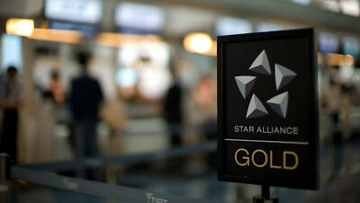 Star Alliance GOLD membership card. 12 months!