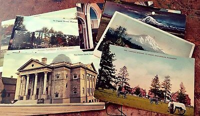 Vintage 13 Postcard Lot 1900-1920's Washington State- Seattle, Orchards, Church