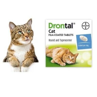 4-48 Tabs New Bayer Drontal for Cats & Kittens Tapeworm Deworming USA Seller