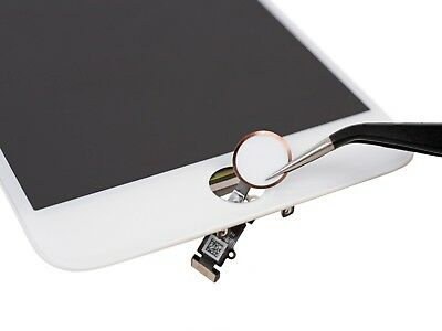 Apple iPhone Home Button Repair Service Turtle IC Replacement 7 8 U10