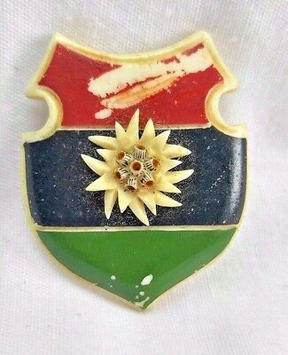 c.1800's Antique Victorian Carved Shield Brooch Red / Green / Black